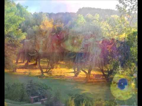 Cierra Los Ojos Y Abre El Corazon (cada Dia Una Nueva Composicion) Sir Flansi