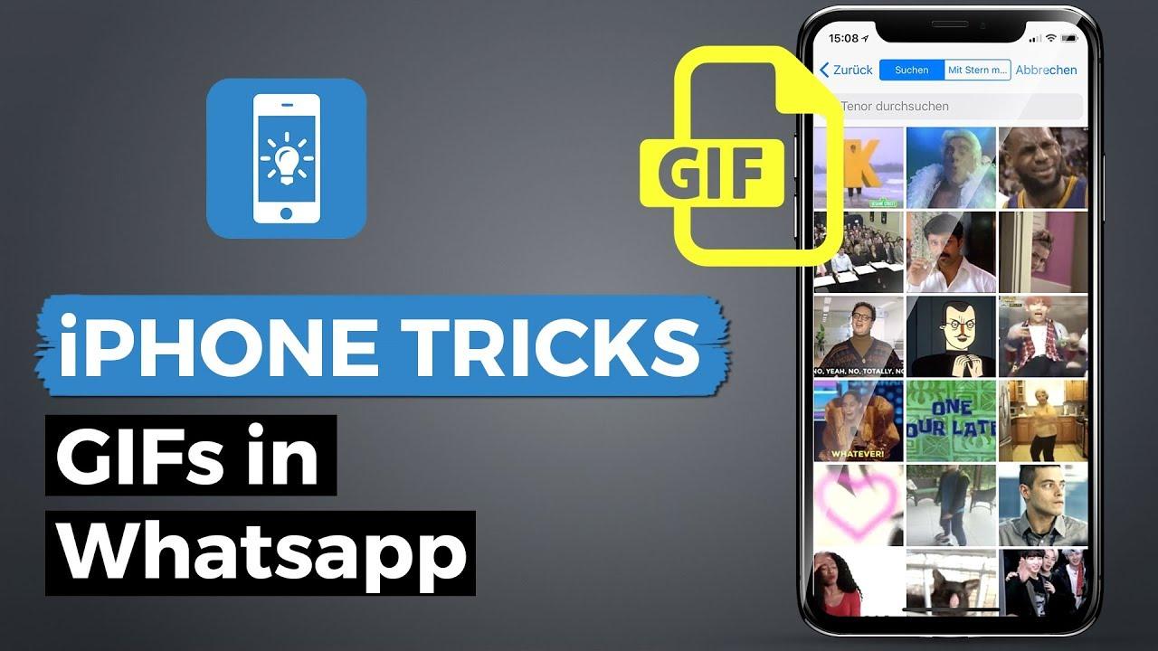 Mit Whatsapp Gifs Finden Verschicken Und Sogar Selber Erstellen
