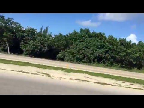 BikeLife @305_rosco Cayman Islands #AMBSHN ROC2015