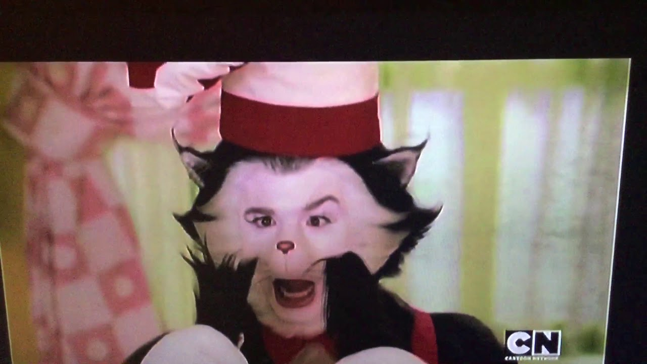 """Cat in the hat said """"son of a..."""""""