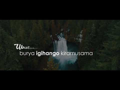 Uzabe Intwari By Niyo Bosco official video Lyrics