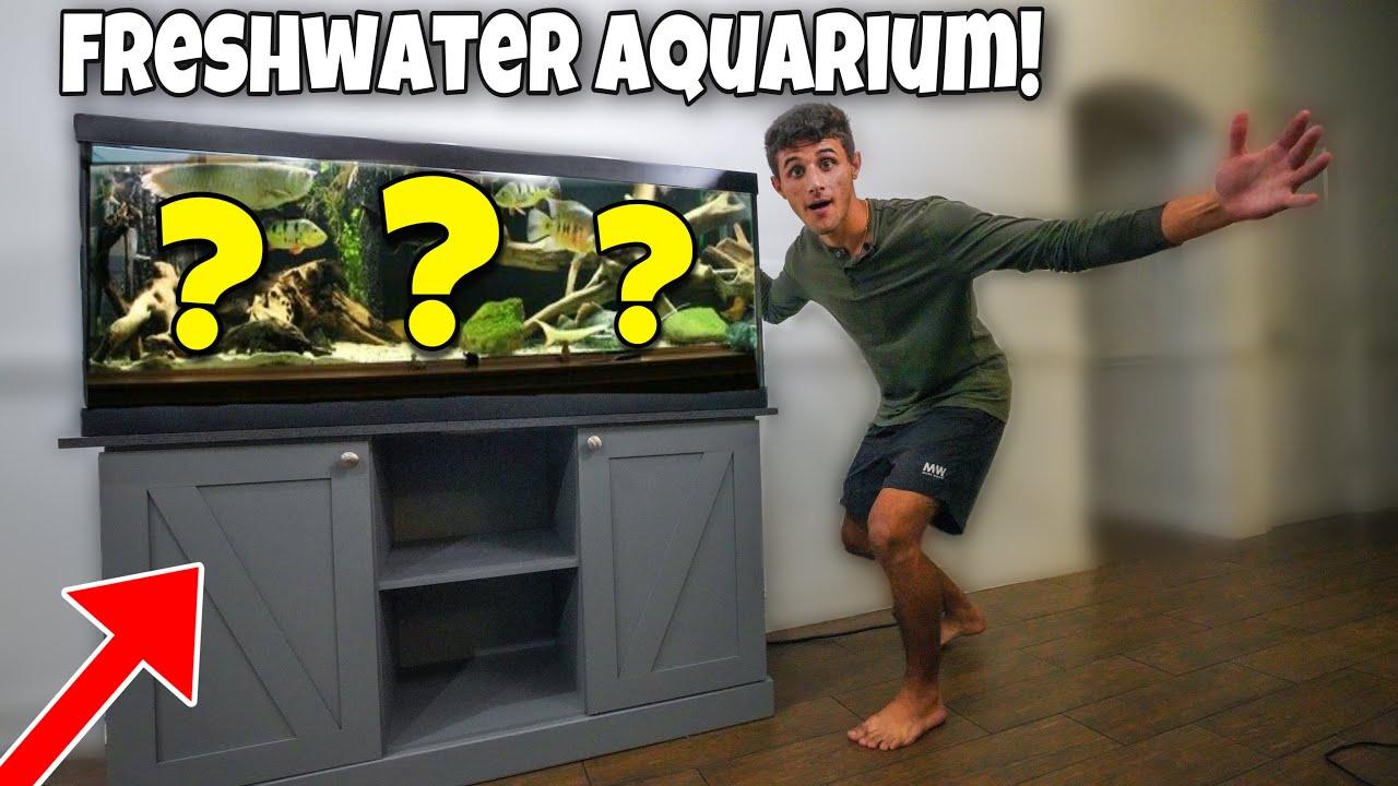 BUYING My DREAM Exotic FISH AQUARIUM!!