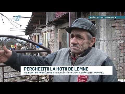 PERCHEZITII LA HOTII DE LEMNE YOUTUBE