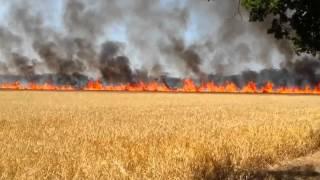 Gros feu entre Herblay et Conflans 20/07/13