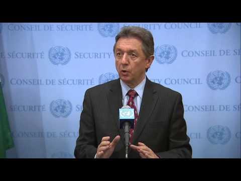 Ukrainian Ambassador to the UN