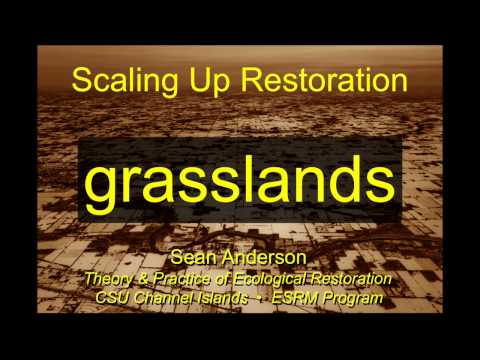 Scaling Up Restoration-Stanford Grasslands