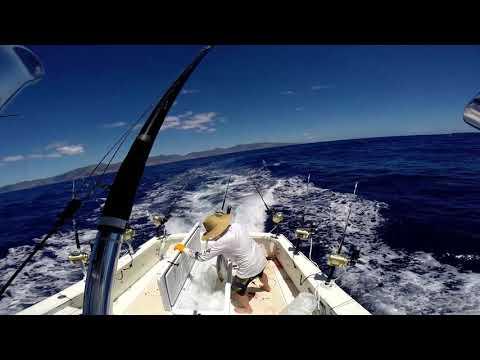 Fun Day Fishing In Hawaii - Aku Tuna And Fishwinch!