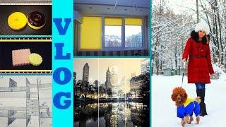 VLOG: Снежок ● Ремонт, ШКАФ-КУПЕ, тканевые ролеты ● Посылка лаки ● Желейное мыло ● Гуляем с Пальмой(, 2014-11-30T10:51:41.000Z)