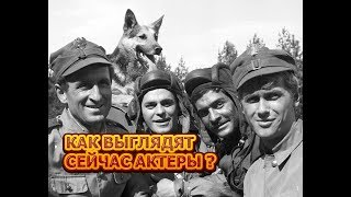 """Как выглядят спустя 50 лет главные герои сериала """"Четыре танкиста и собака"""""""