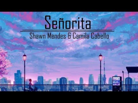 Shawn Mendes Camila Cabello – Señorita