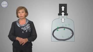 Физика 7 Давление газа