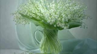Download Л.Бетховен-К Элизе Mp3 and Videos