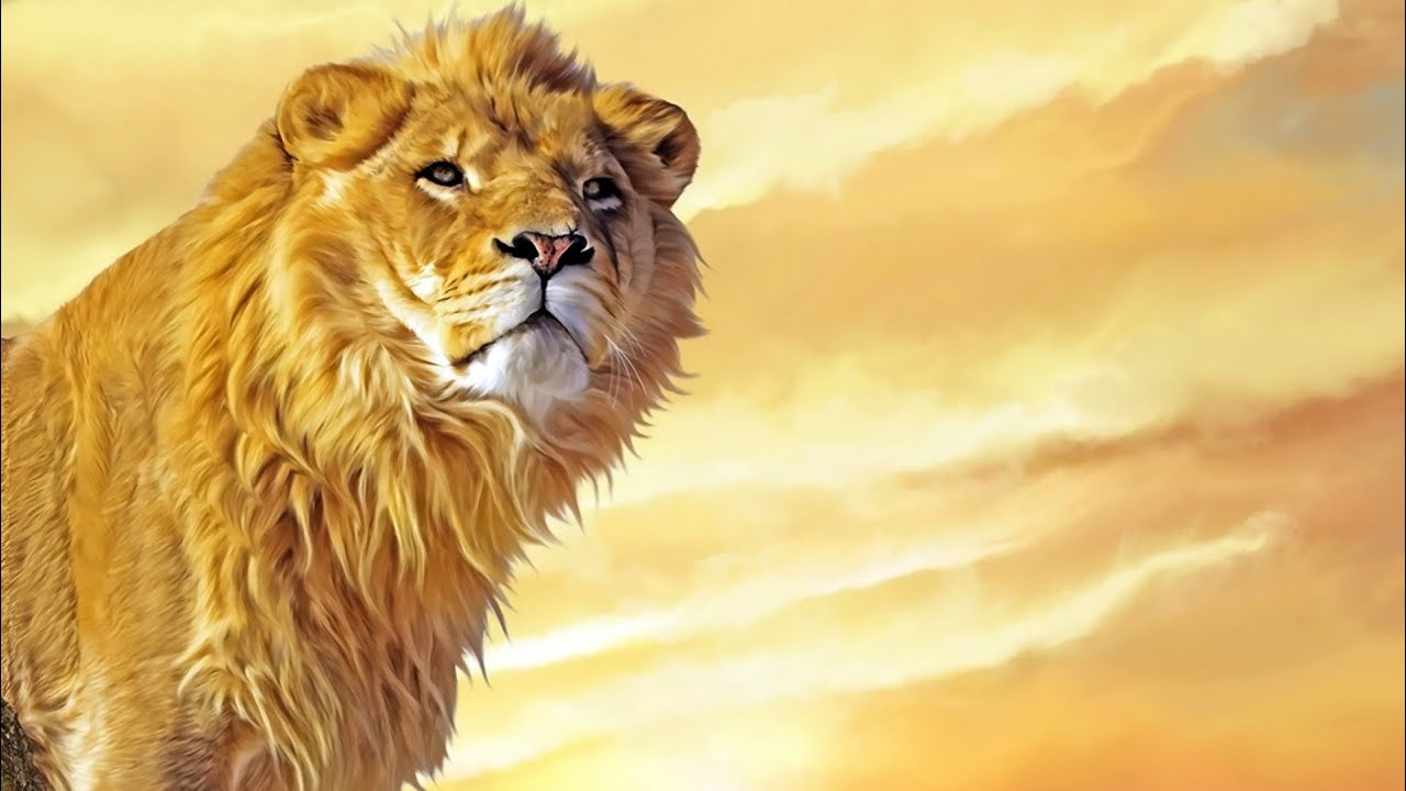 Lion Attitude whatsapp status Boy whatsapp status Lion Attitude Status for  Boy||OnlyForFun2