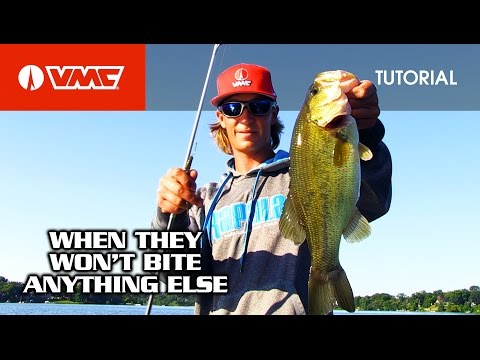 The Ultimate Neko Rig: HOW TO FISH The VMC® Neko Hook & Weight