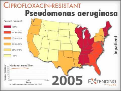 Pseudomonas aeruginosa resistant to cipro