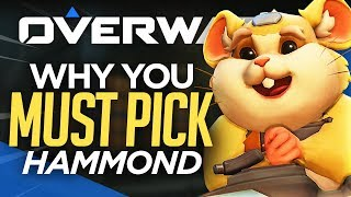 Top 5 Reasons You NEED to Play Hammond - Overwatch