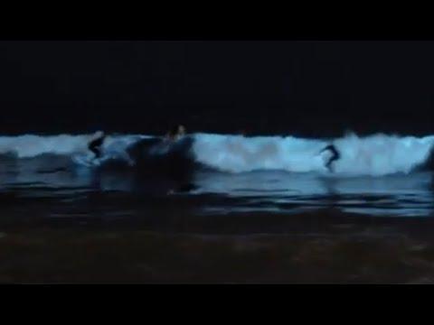 Blue Waves Bioluminescent Plankton At Venice Beach Los Angeles California In 4k Uhd 2160p Youtube