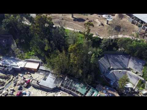 San Diego - Balboa Park ZOO from Drone | DJI Mavic Pro