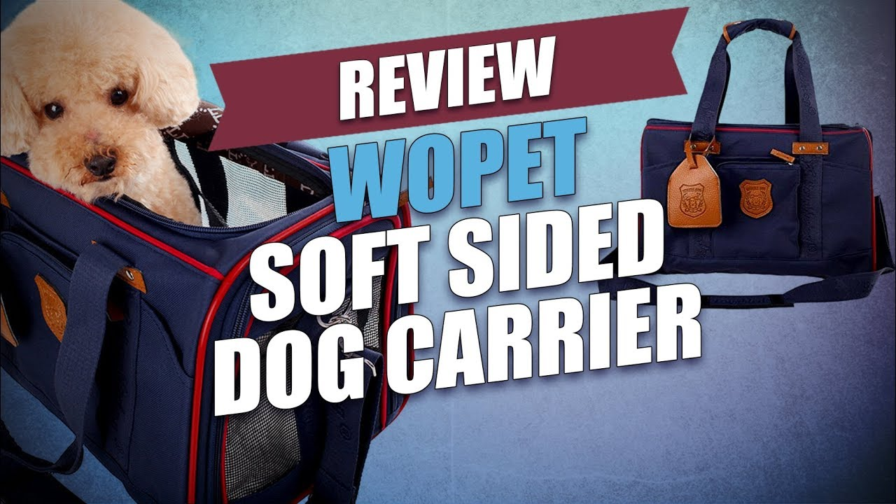 WOpet Soft Sided Dog Carrier Review - YouTube