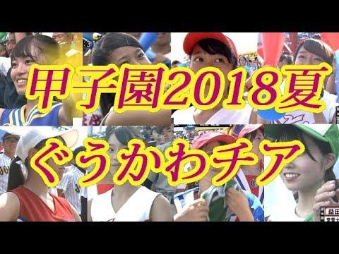 甲子園2018夏ぐうかわチア特集!可愛い子多すぎ!