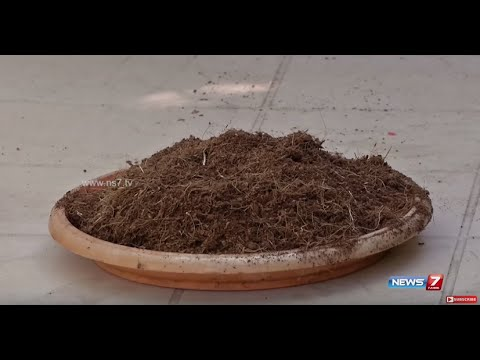 Tips for Soilless Cultivation in Terrace Gardening | Poovali | News7 Tamil