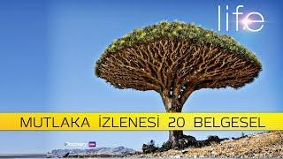 MUTLAKA İZLEMENİZ GEREKEN 20 BELGESEL