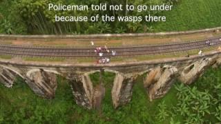 Wasp Nest Under the 9 arch Bridge! Ella Adventures | Follow Mike in Sri Lanka