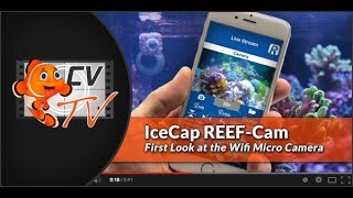 IceCap Reef-Cam: First Look at the WiFi Camera