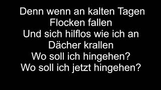 Sarah Connor - Flugzeug aus Papier (Live/ Lyrics)