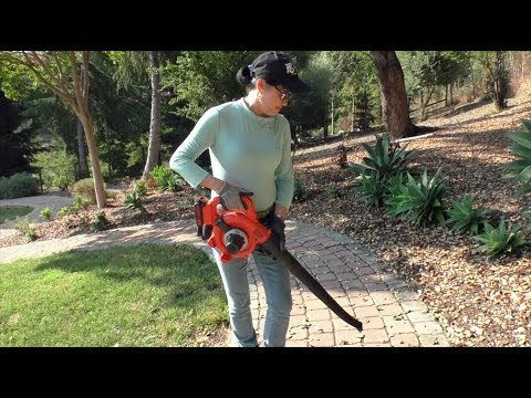 Black Decker Cordless Leaf Blower Demonstration Review