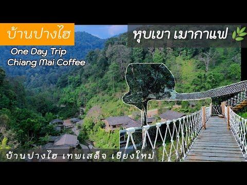 บ้านปางไฮ,  ที่เที่ยวเชียงใหม่ ธรรมชาติ,  กาแฟ, ที่พัก ดอยสะเก็ด