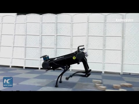 Chinese researchers unveil upgraded four-legged robot