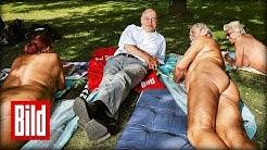 FKK - Gregor Gysi will Angela Merkel nicht nackt sehen
