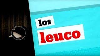 Los Leuco (13/03/2018)