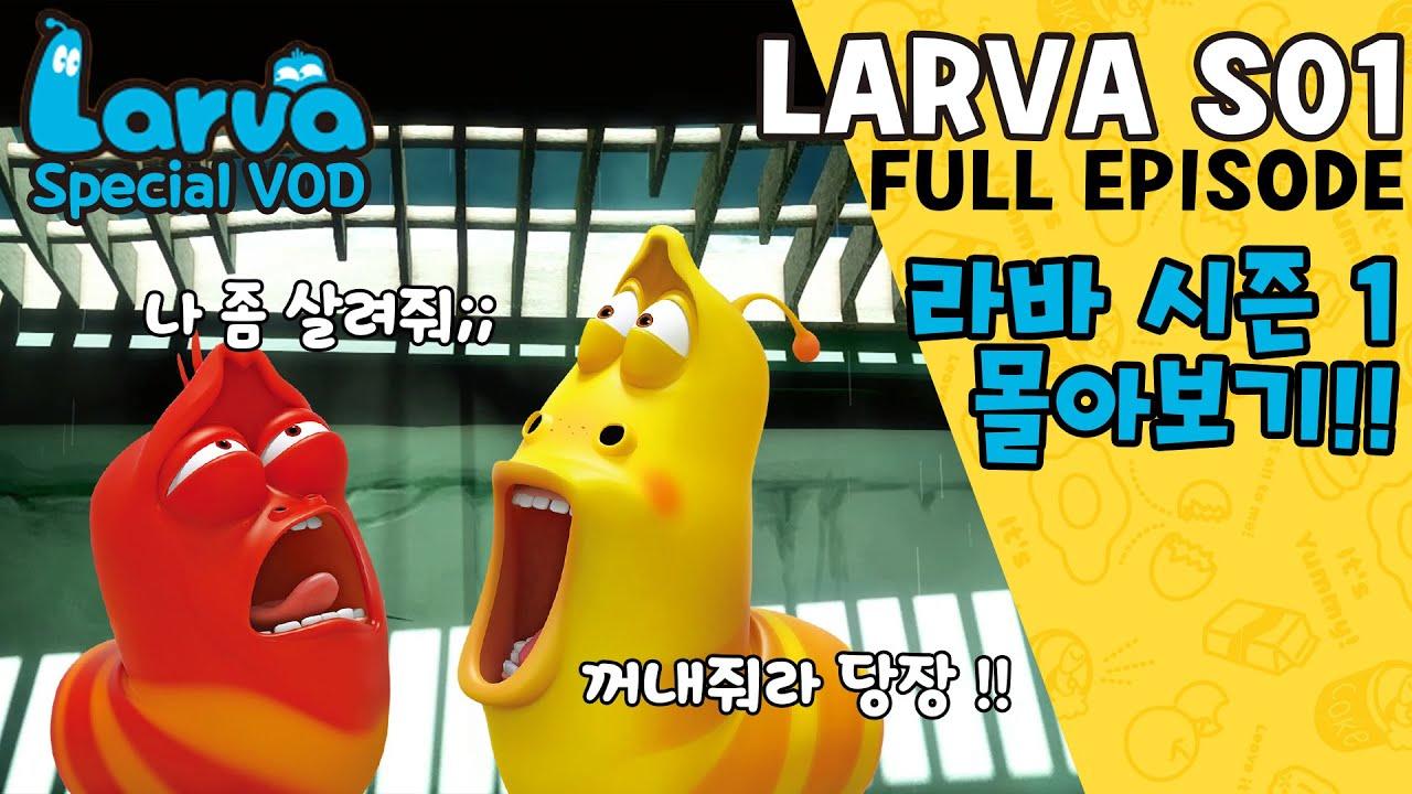 Download [HOT CLIP] Larva Season 1 FULL VOD I Special Episodes I 라바 시즌 1 에피소드 모음집 I TUBAn Friends Cartoon