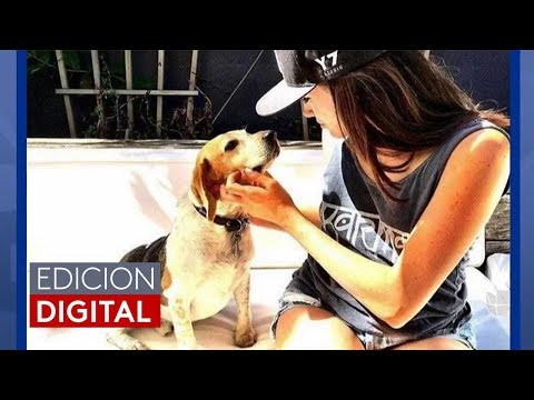 Noticiero Univision #EdicionDigital 05/24/18