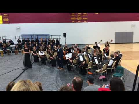 Lucile Erwin Middle School Advanced Chamber Strings