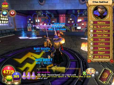 Wizard101 - OPENING THE KNIGHT'S LORE PACK!!!
