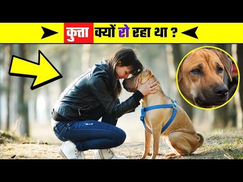 जाने क्या है इसके पीछे की कहानी 🤔 - By Abhishek Verma | Hindi Facts #shorts