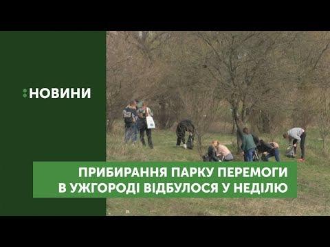 """В рамках """"Школи волонтерства"""" активісти прибирали територію міського парку"""