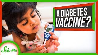 Could a Vaccine Prevent Type 1 Diabetes?