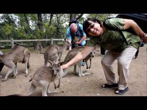 Lone Pine Koala Sanctuary - May 12, 2017