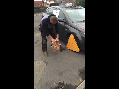 How to deal with parking ticket bailiffs, northern style, suck my fucking dick !