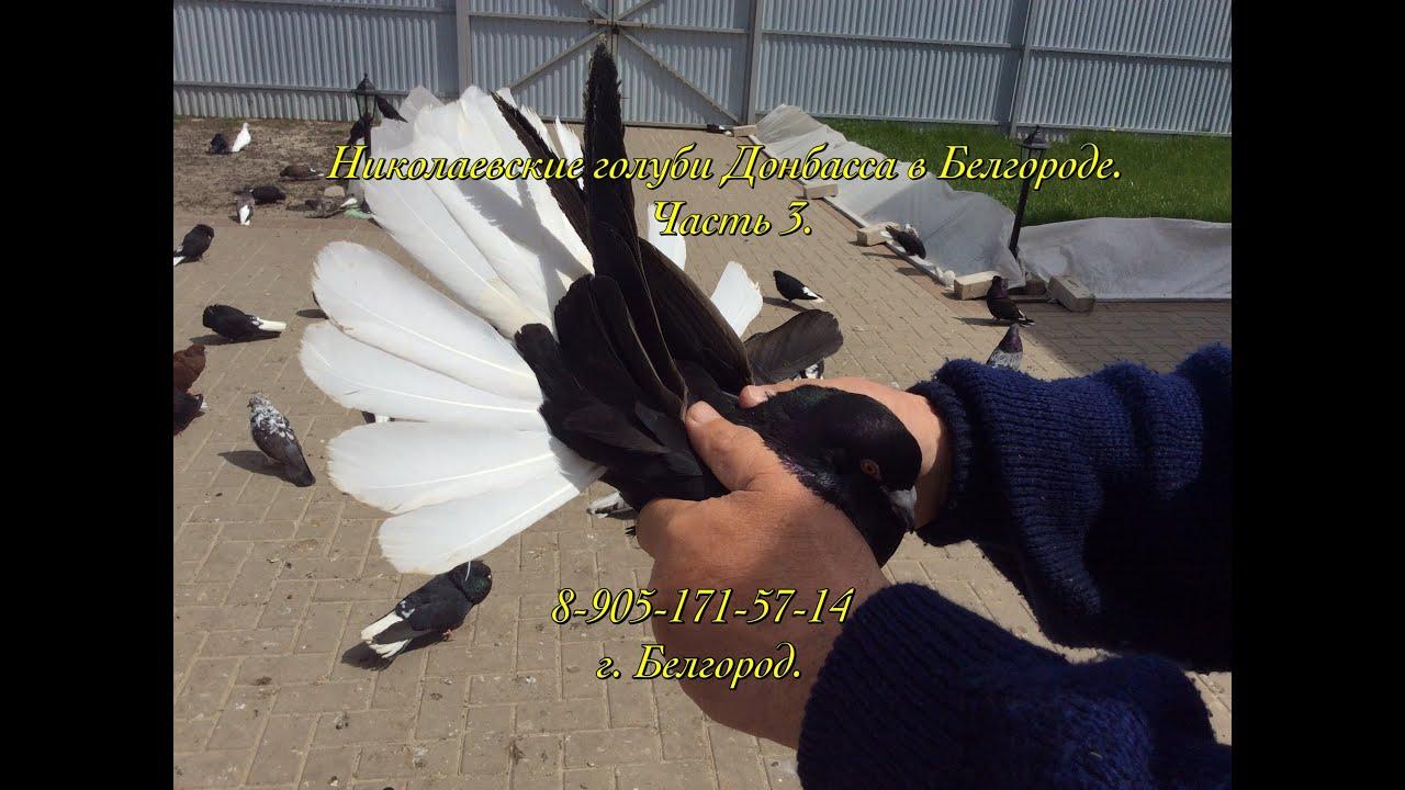 дом в белгороде - YouTube