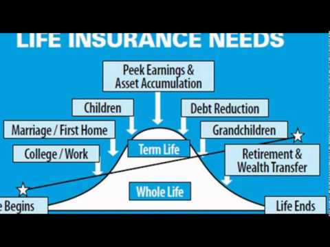 best life insurance company in usa