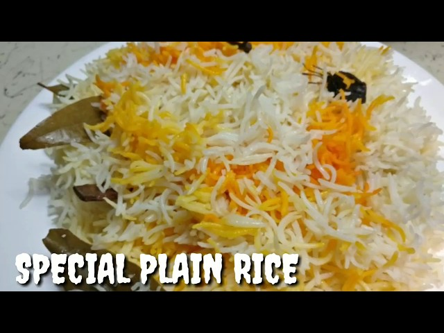 Special Plain Rice