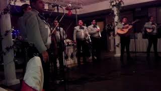 Cedano's Wedding-Al Sur de La Frontera- Mariachi Los Camperos
