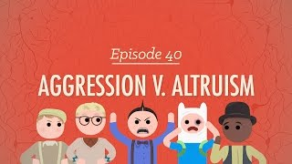 Aggression vs. Altruism: Crash Course Psychology #40
