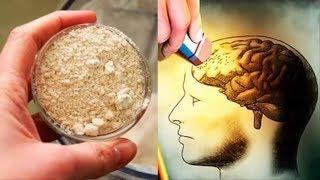 Diese Nahrungsmittel empfehlen Neurologen bei Gedächtnisverlust