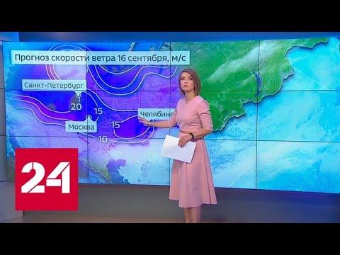 """""""Погода 24"""": на Русской равнине осень активно вступает в свои права - Россия 24"""
